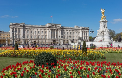 "Buckingham Palace from gardens, London, UK - Diliff"" by Diliff - Own work. Licensed under CC BY-SA 3.0 via Wikimedia Commons"