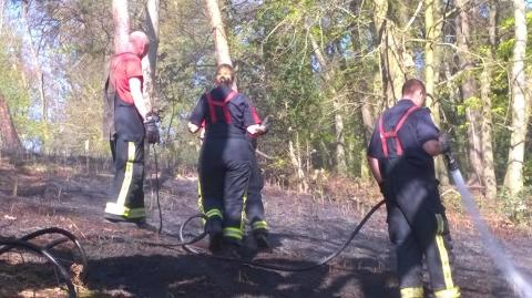 LFB firefighters dealing with grassland blaze in Abbey Wood. Image: @LondonFire