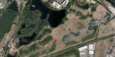 Bedfont Lakes Country Park. Image: Google satellite.