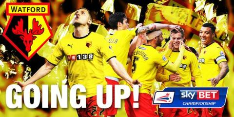 Watford's promotion celebrated on social media by the Football League Championship. Image: @SkyBetChamp