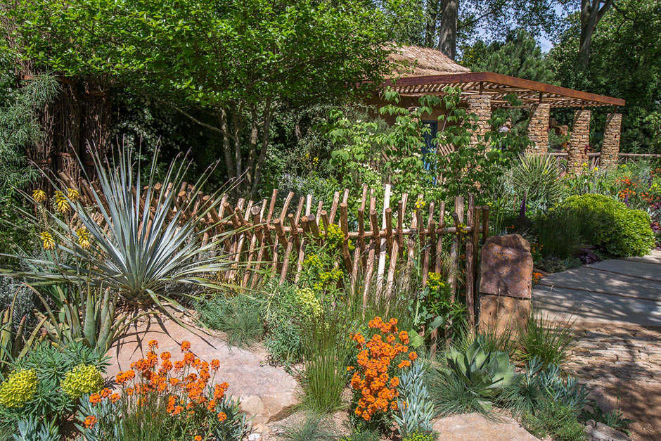 Sentebale Garden dedicated to Prince Harrys charity. Image: RHS org click for link