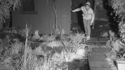 Batton caught on urban wildlife CCTV. Image: Met Police