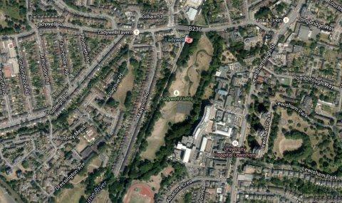 Malyons Road Lewisham. Image: Google Satellite