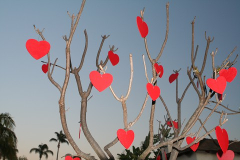Valentine's Day Tree CC Johntex