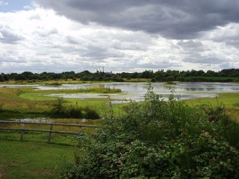 800px-Chase_Nature_Reserve,_London_Borough_of_Barking_&_Dagenham,_RM7_(2682552177)