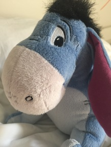 Disney's talking toy Eeyore. Image: radlemadle